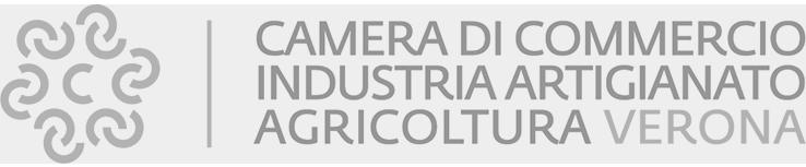 Camera Commercio VR